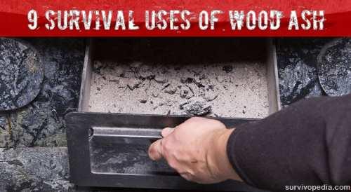 BIG-ash-wood ash