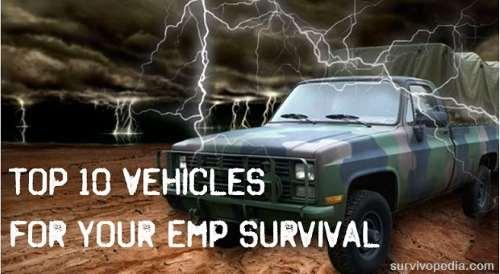 big-empbov EMP Survival