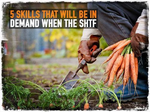 SHTF-Skills