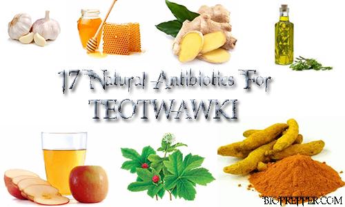 17 Natural Antibiotics For TEOTWAWKI