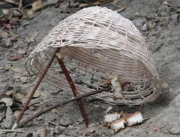 basket fall trap