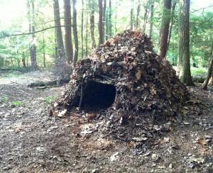 wilderness-shelter