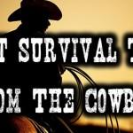 BIG-Cowboy