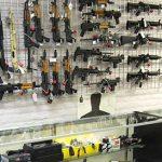 BIG-Rifles Survival Rifles