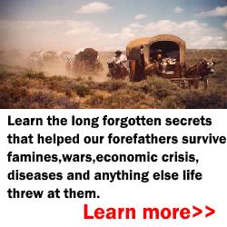 Thelostways5 Pioneer Survival Lessons