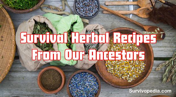 Big Herbs Recipes 11 Survival Herbal Recipes