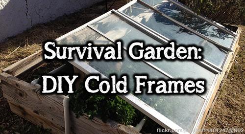 cold frames