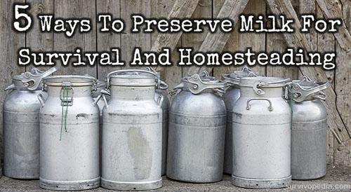 Preserve Milk