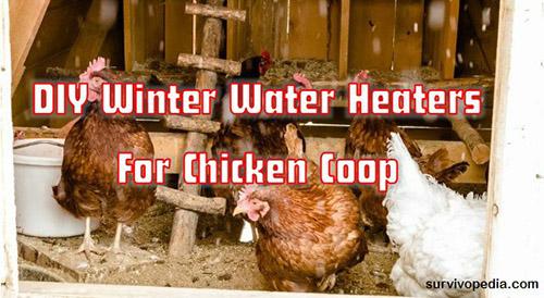 DIY Winter Water Heaters